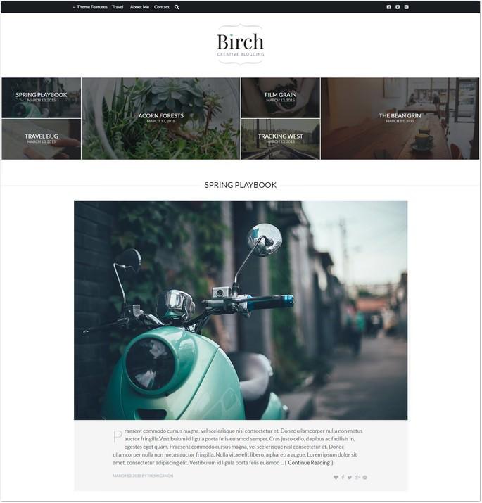 Birch - Responsive WordPress Personal Blog