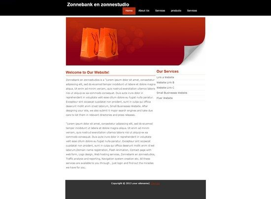 Business Zonne Template