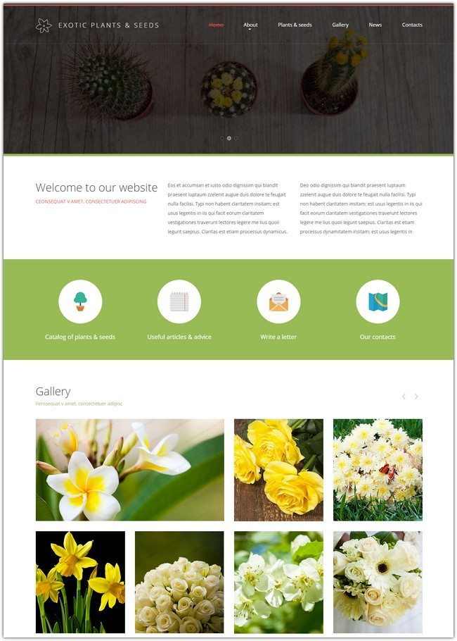Exotic Plants Website Template