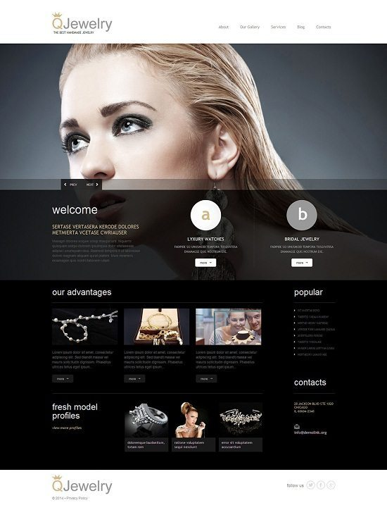Jewelry Responsive WP Theme