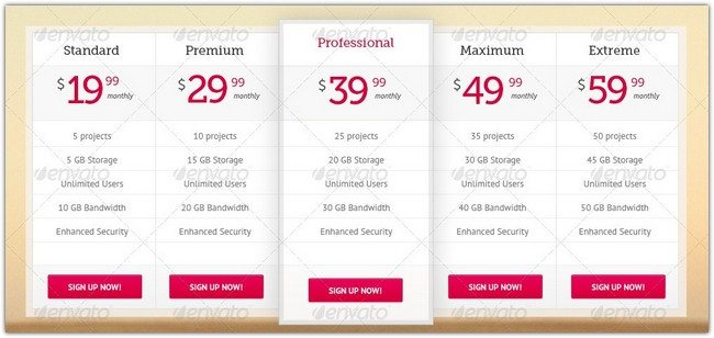 Pricing Table 5 Version