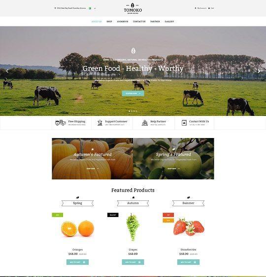 Tomoko Organic Food-Fruit-Vegetables Responsive WordPress Theme