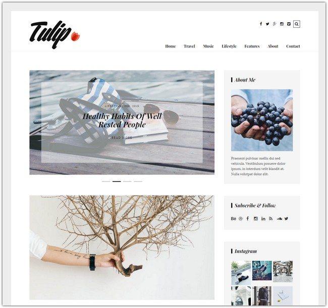 Tulip - Responsive WordPress Blog Theme