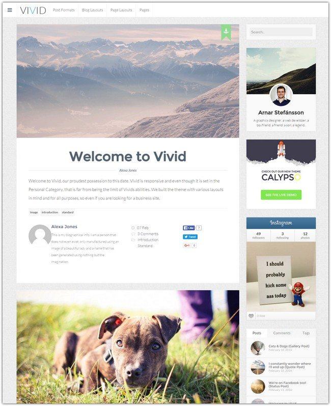 Vivid Customizable Responsive Personal Blog