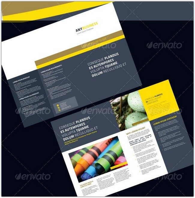 4 Pages Professional Brochure