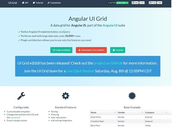 Angular UI Grid
