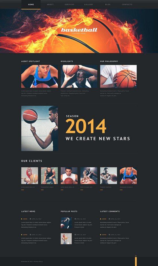 Basketball Put on Fire WordPress Theme