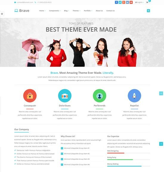 Brave-Responsive-Theme-250-Features
