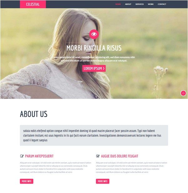 Celestial a Personal Portfolio Flat Bootstrap Responsive web template