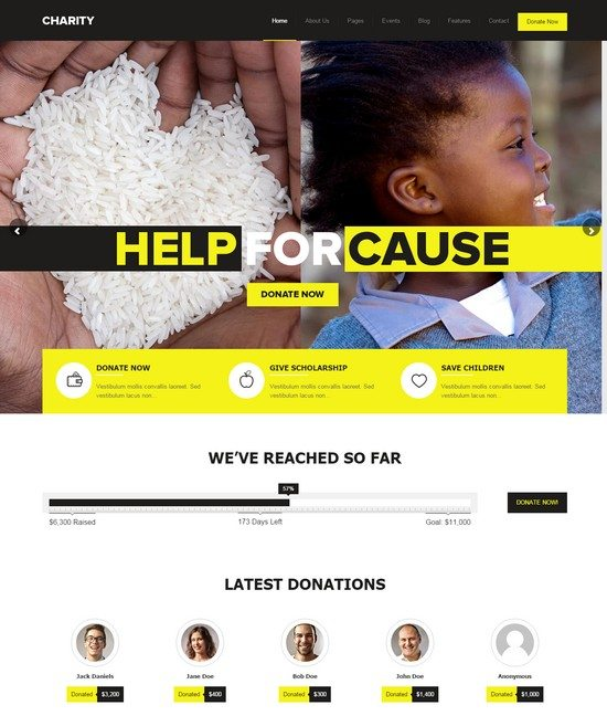 Charity - Foundation Fundraising WordPress Theme