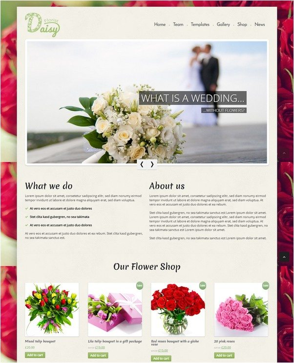 Daisy – WP Flowers,Florist, Gardener