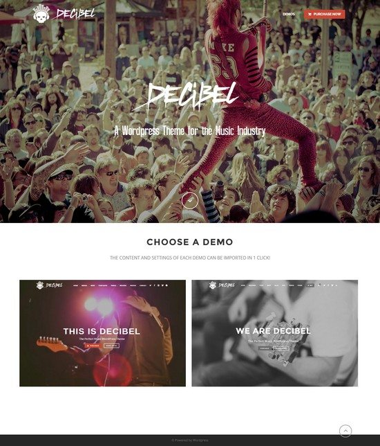 Decibel – Professional Music WordPress Theme