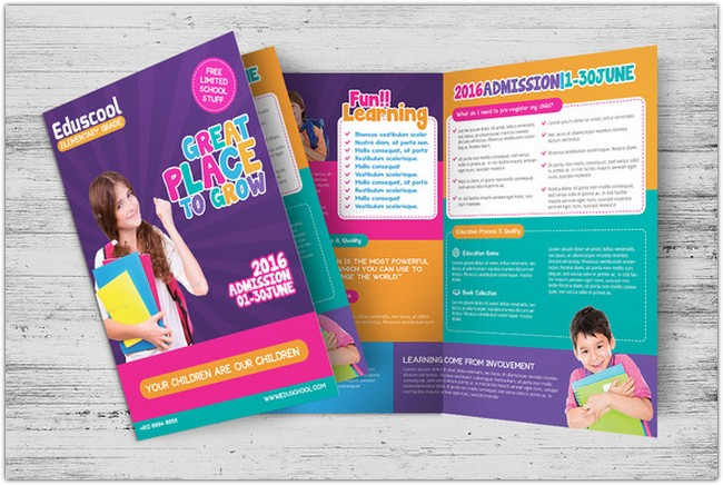 Elementary School Education Bi-Fold