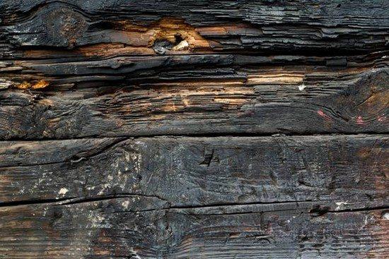 Free Texture - burnt