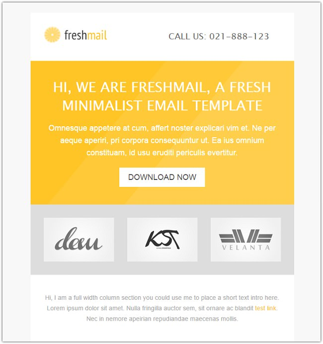 freshmail-email-with-template-editor