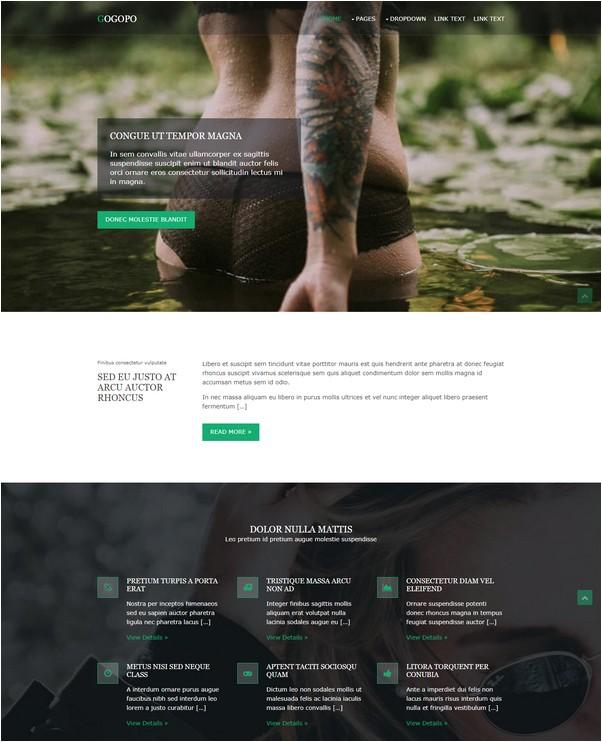 Gogopo Free Website Template