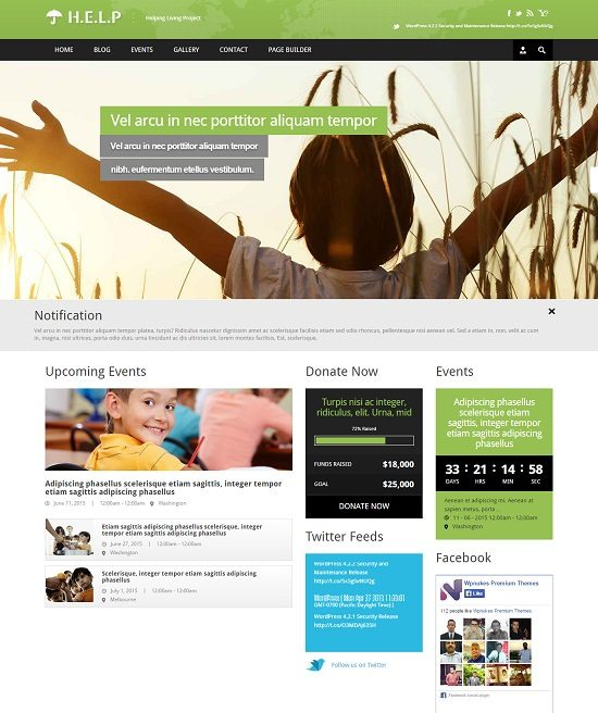 HELP - NGO WordPress Theme
