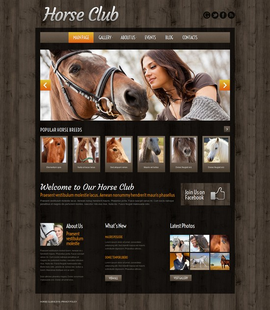 Horse Breeding Farm WordPress Theme