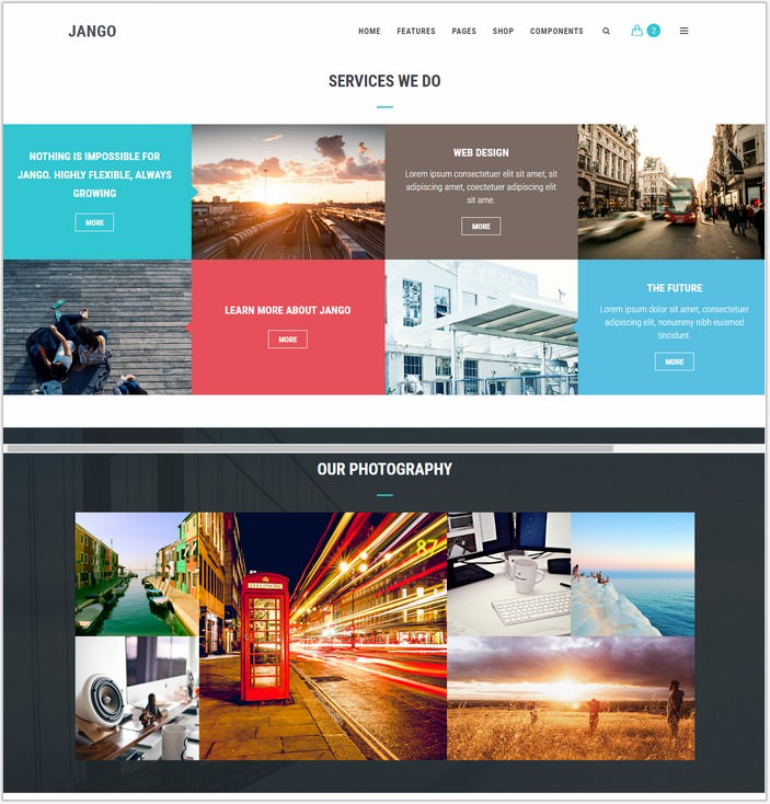Jango Highly Flexible Component Based HTML5 Template
