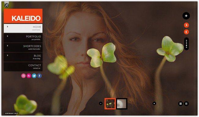 Kaleido Responsive Fullscreen Studio for WordPress