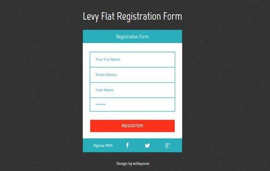 Levy-Registration-Form-Responsive-Widget-Template