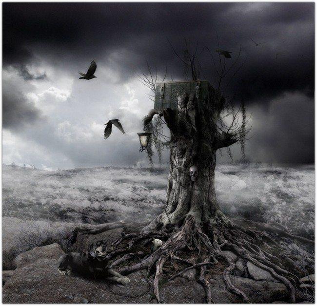 MYSTERIOUS HOLLOW DARK LANDSCAPE