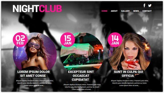 Night Club Euphoria WordPress Theme