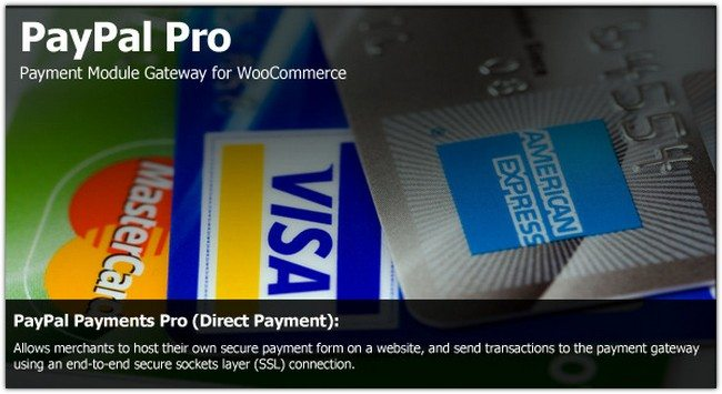 PayPal Pro Payment Module