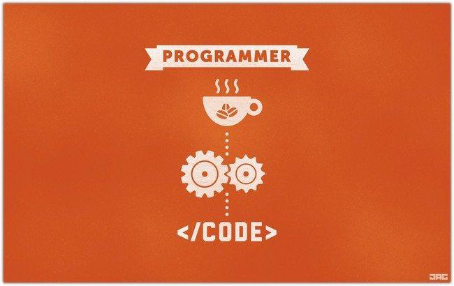 Programmer Code