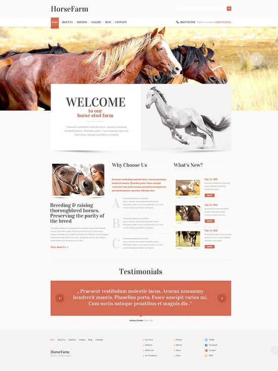 Promotion of Horse Farms WordPress Theme