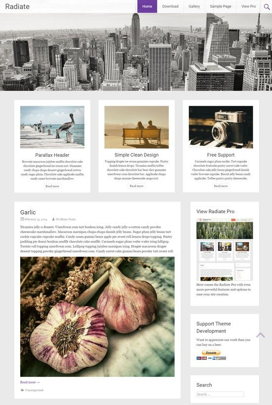 Radiate A clean, creative blogging free responsive WordPress theme