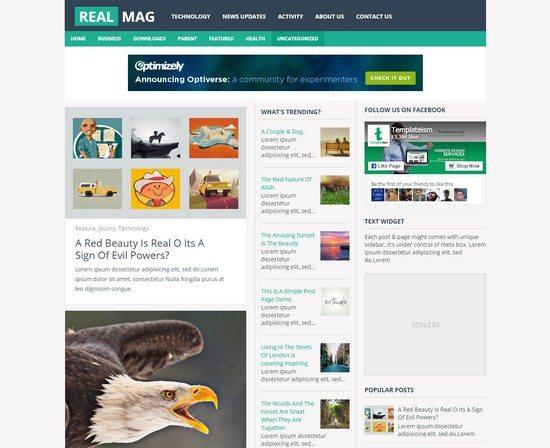 RealMag Professional Blogger Templat