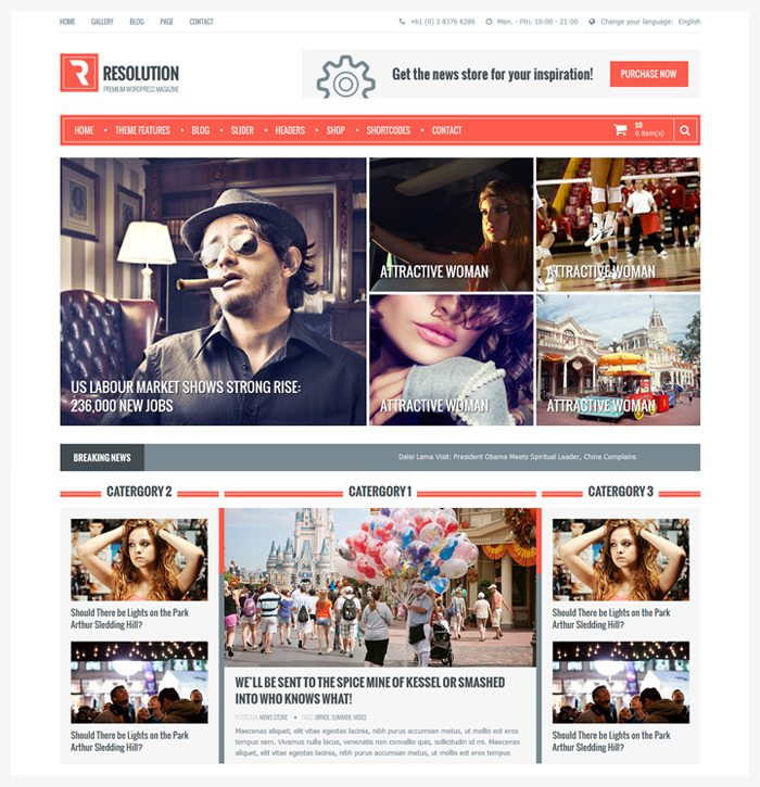 Resolution Multi Purpose WordPress Theme (Light version)