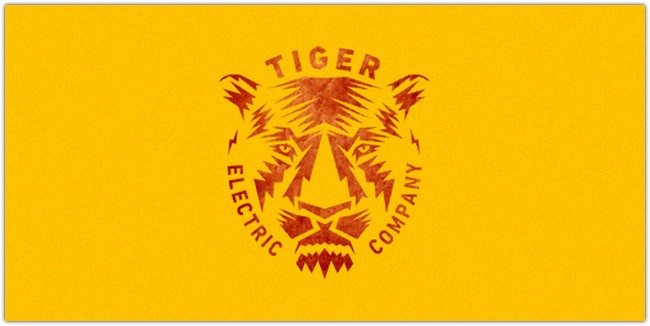 TIGER ELECTRIC
