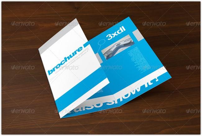 Tri-Fold DL brochure