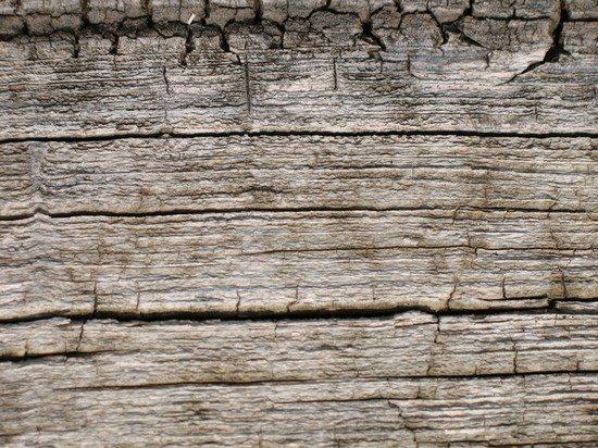 Wood Grain Texture 9