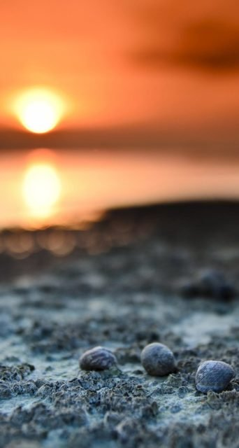 Blur Sunset Iphone Landscape Wallpaper
