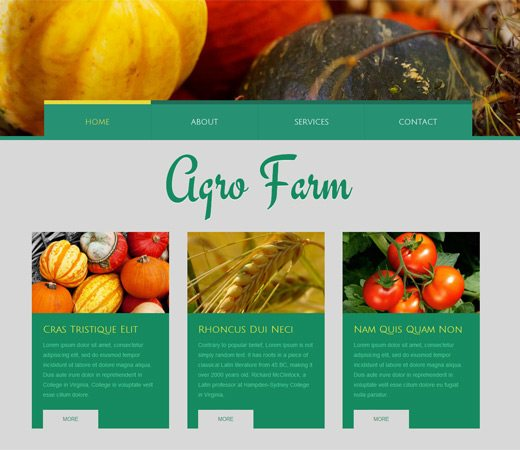 Agro farm an agricultural Mobile Website Template