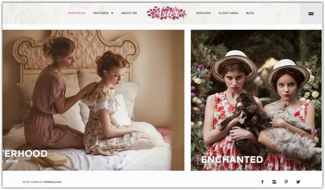 Aster - Photography Theme