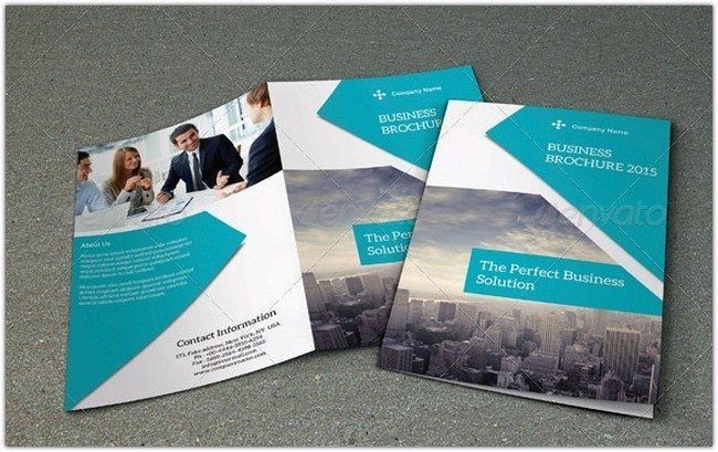 Bifold Business Brochure-V123