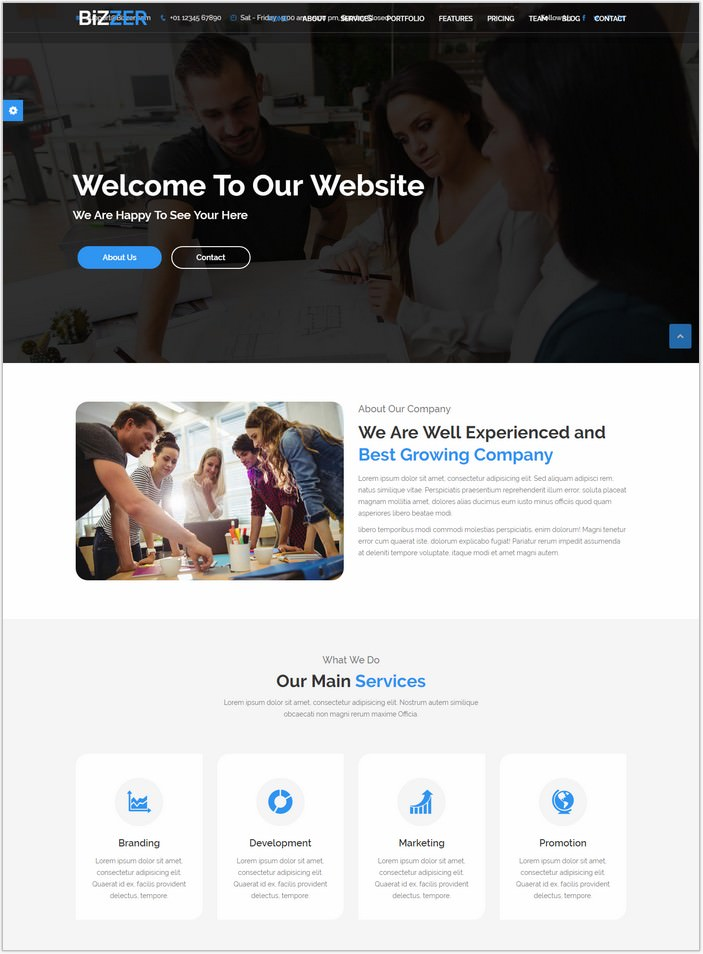 Bizzer - One Page Parallax and Business HTML5 Template