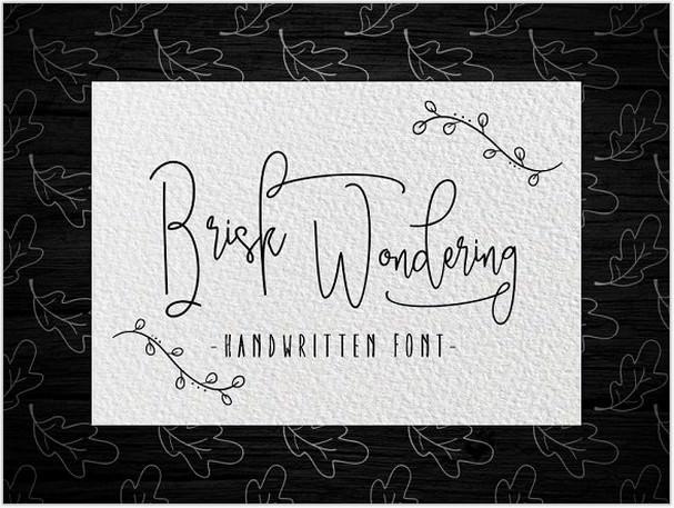 Brisk wondering Handwritten Font