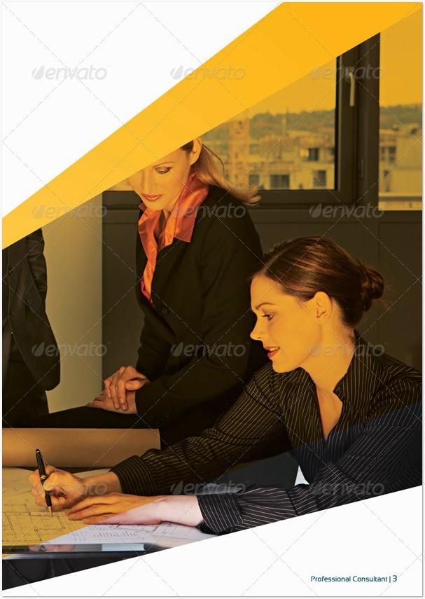 Business Brochure By broluthfi