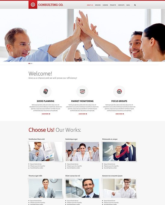 CONSULTING CO. Responsive Website Template