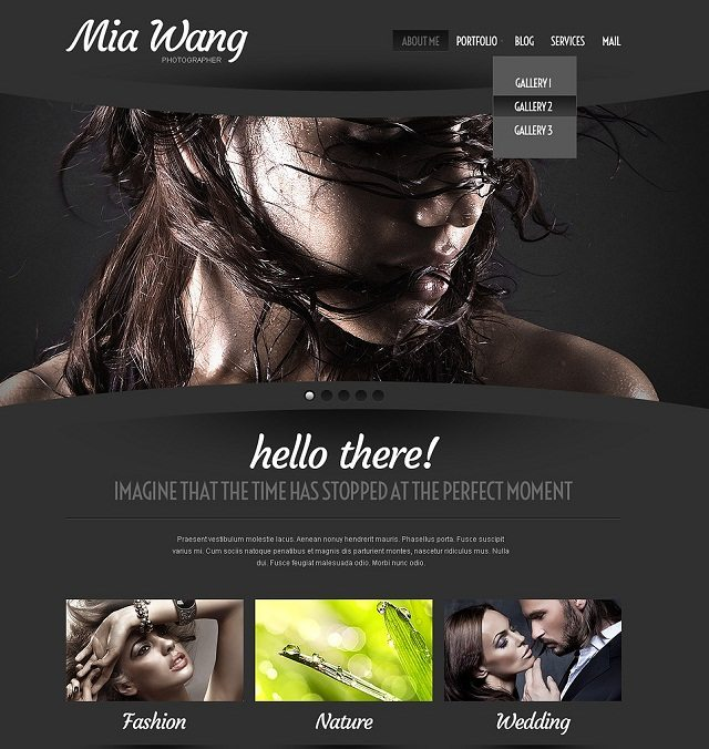 Cherry Photographer Portfolio WordPress Themes