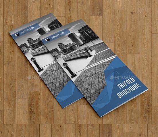 Corporate Trifold Brochure-V251