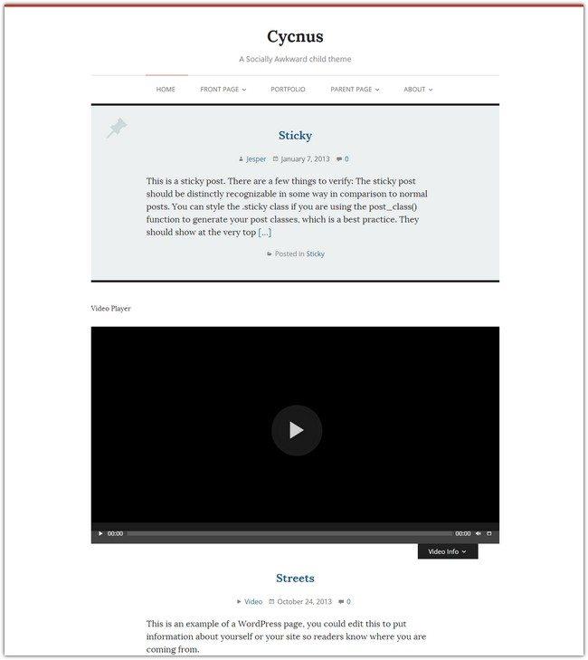 Cycnus WordPress Theme