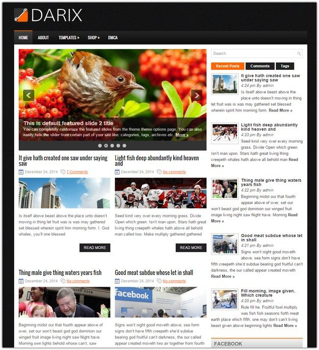 Darix WordPress Theme