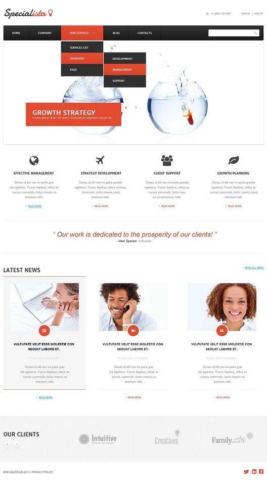 Effective Management Online WordPress Theme