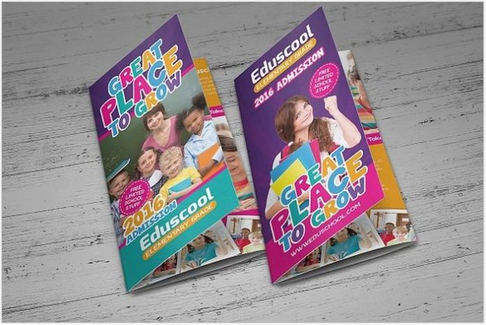 Elementary School Education Trifold